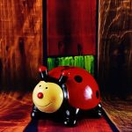 ladybug-2122947_640